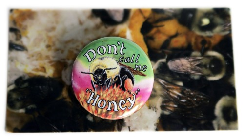 Bee pin and card