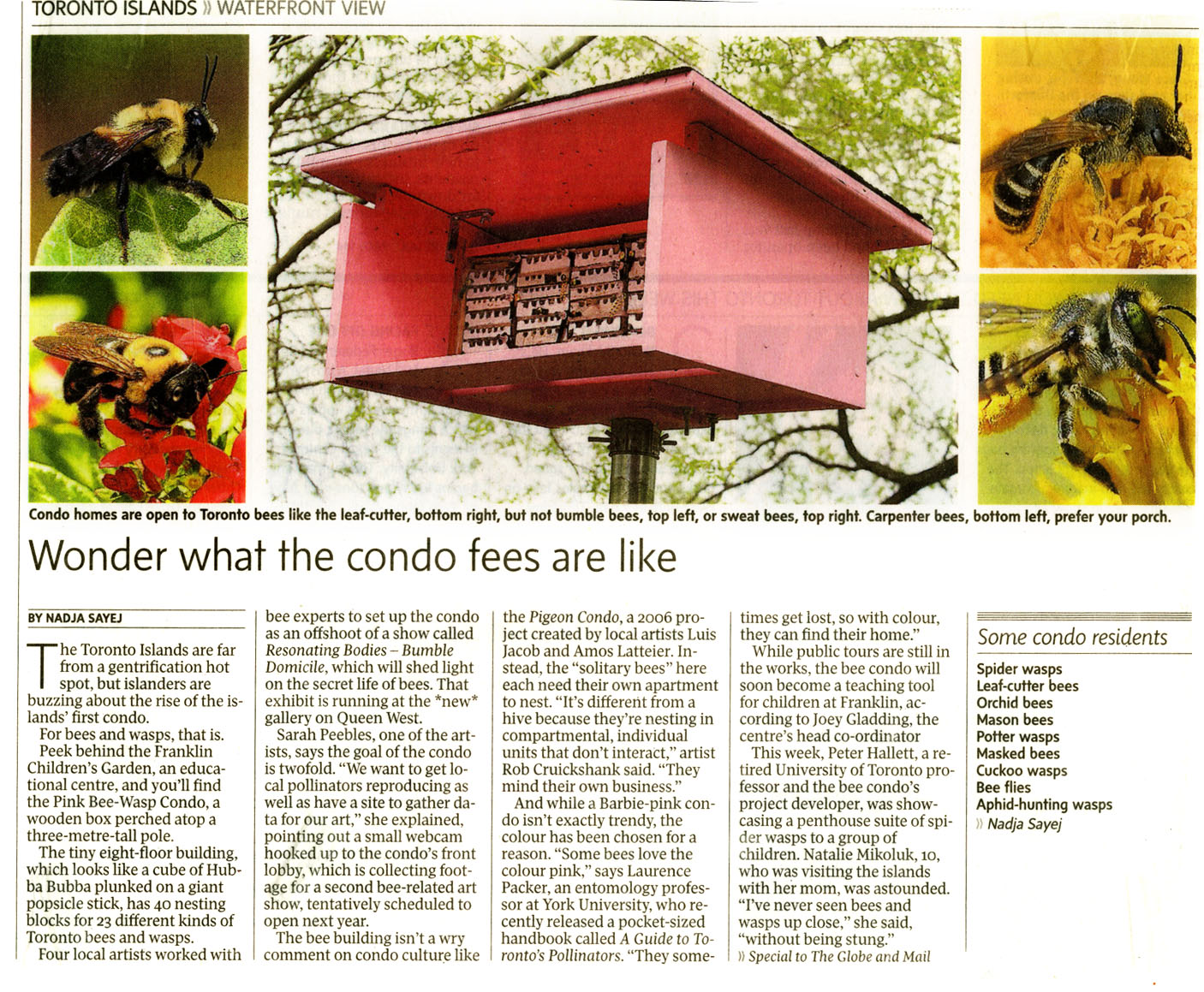 Homes for native bees