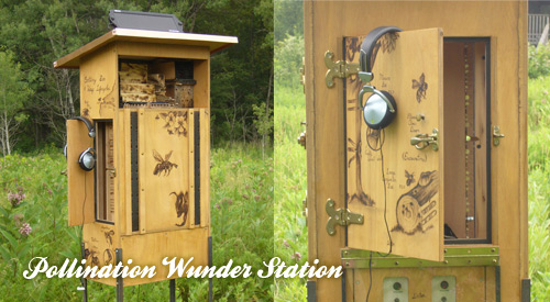 Resonating Bodies - Pollination Wunder Station