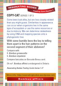 rbtcs1-rev2009-14-card-back-07