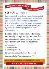 rbtcs1-rev2009-18-card-back-09