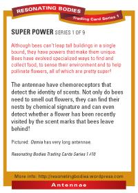 rbtcs1-rev2009-20-card-back-10