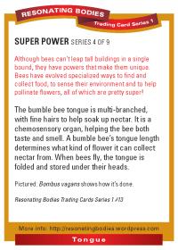 rbtcs1-rev2009-26-card-back-13