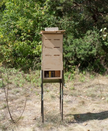 """bee booth"" field observation station"