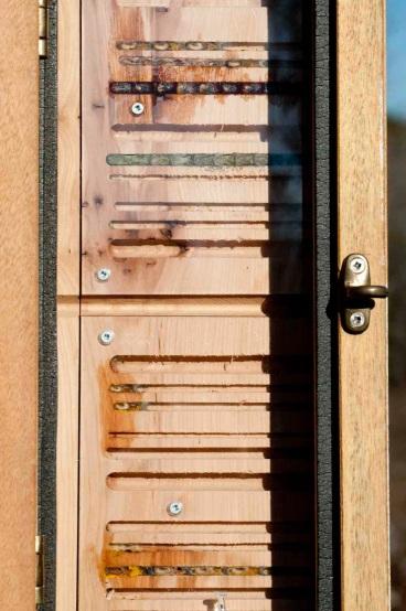 Resonating Bodies - Bee Both Plank