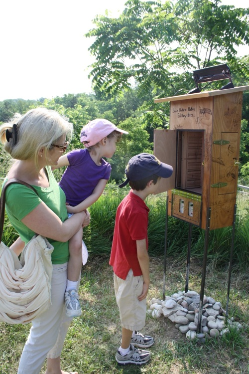 Audio Bee Booth BF visitors