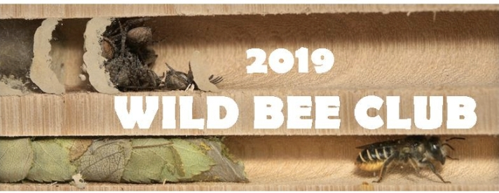 bee club 2019 crop