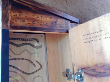 Dwelling cabinet plank door sm