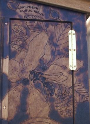 CSG Hylaeus door cropA